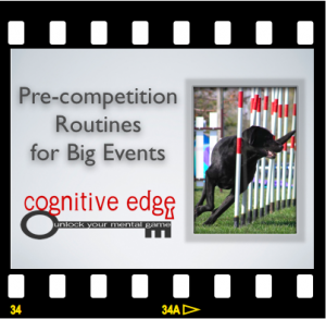 Agility Pre-Competition Routine Video